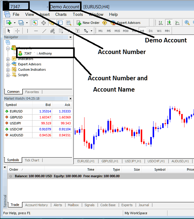 Account Name and Account Number on MT4 Indices Trading Platform Account - Indices MetaTrader Account