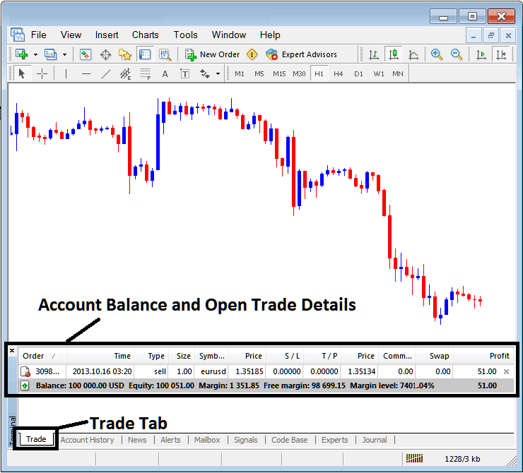 Account Balance and Open Trade Details on MT4 Terminal