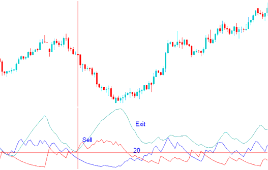Dynamic divergence trading system